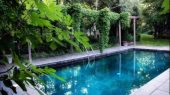 Swimming-Pool-With-shade-trees-1