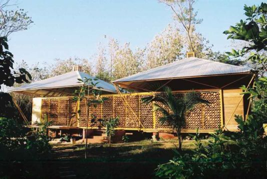 Forest for a Moon Dazzler home design back view